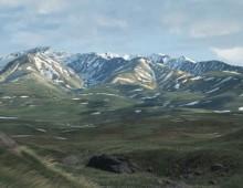 CGI Environment